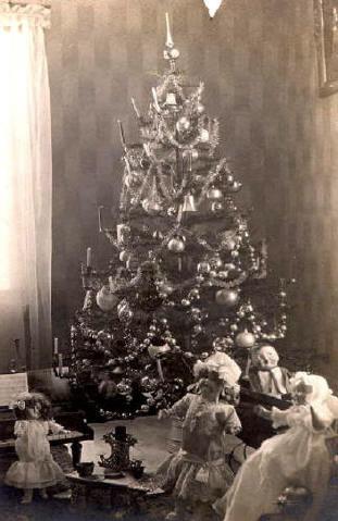 vintage tree photos