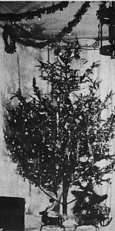 The first reported electrically lit Christmas tree, December 1882.
